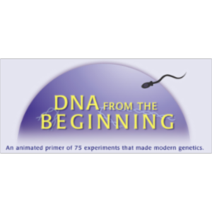 DNA from the Beginning icon