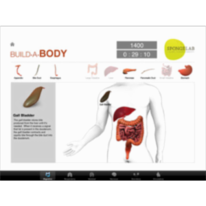 Build a Body App for iPad icon