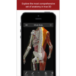 The Biodigital Human App for iOS icon