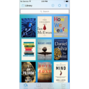Bluefire Reader App for iOS icon