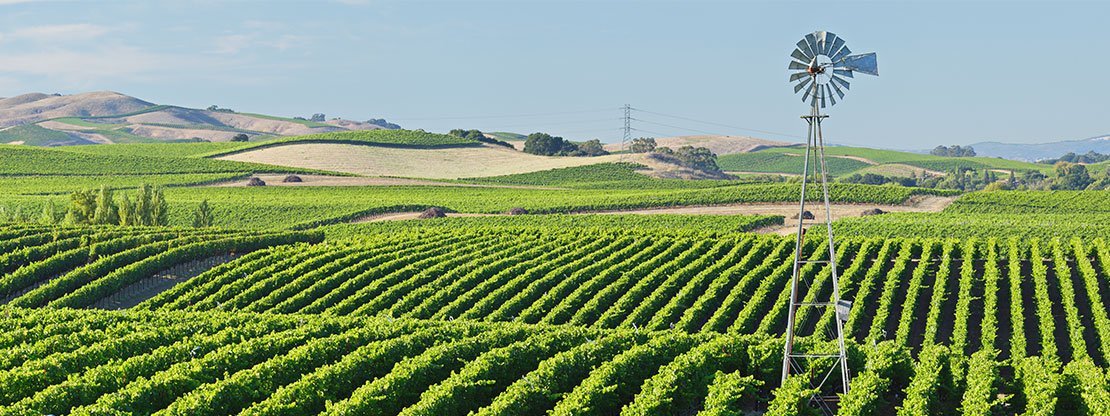 MERLOT Agriculture and Environmental Sciences